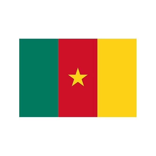 Cameroon 6 x 4 Inch Polyester Hand Flag - 15cm x 10cm