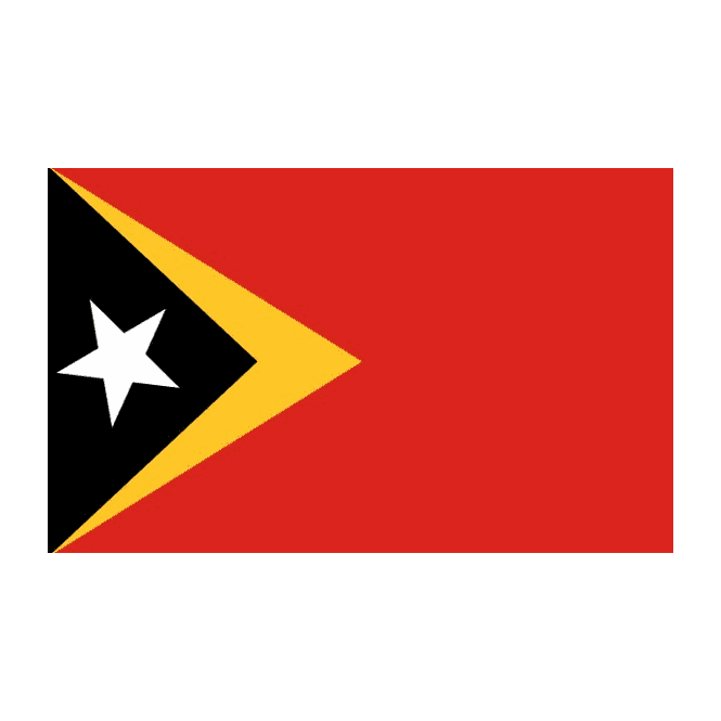 East Timor 3x2 Feet Polyester Flag with Eyelets - 90cm x 60cm