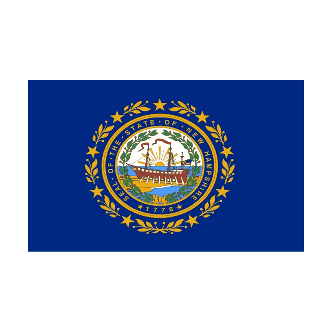 New Hampshire 5x3 Feet Polyester Flag with Eyelets - 150cm x 90cm