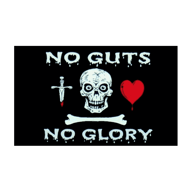 No Guts 5x3 Feet Polyester Flag With Eyelets - 150cm X 90cm