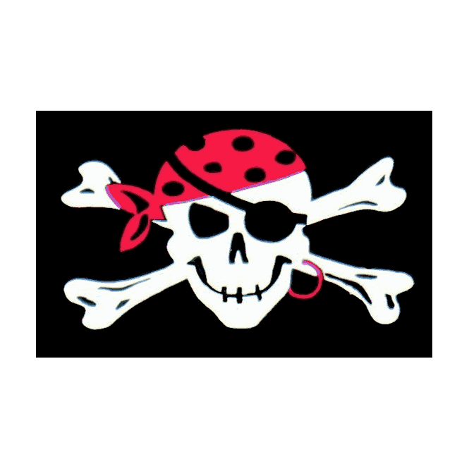 One Eyed Jack 5x3 Feet Polyester Flag with Eyelets - 150cm x 90cm