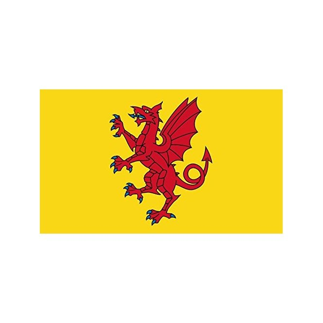 Somerset yellow 5x3 Feet Polyester Flag with Eyelets - 150cm x 90cm