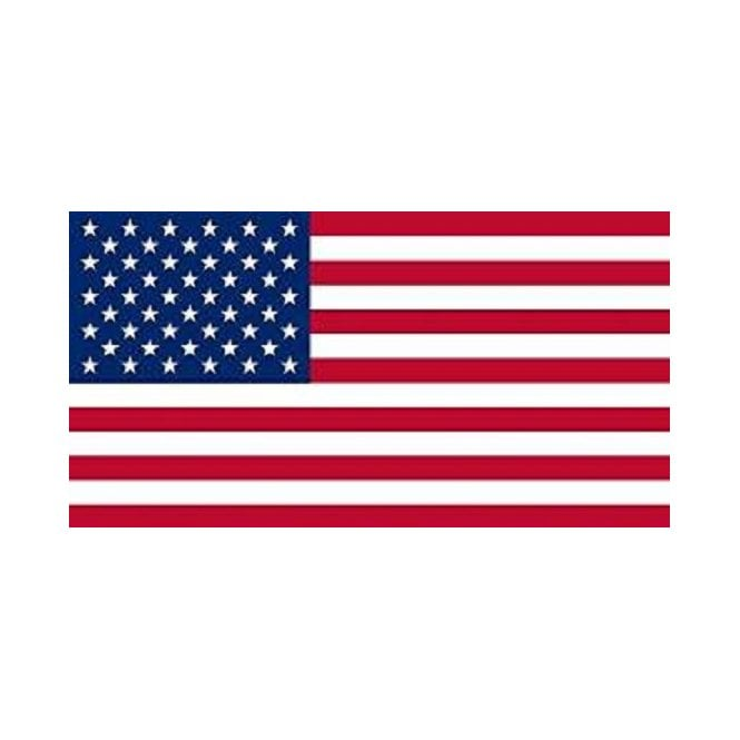 USA 3x2 Feet Polyester Flag with Eyelets - 90cm x 60cm